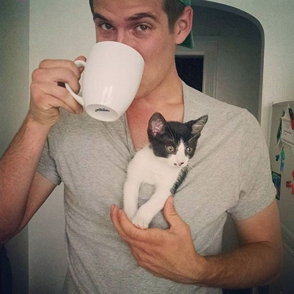 instagram-tios-buenos-gatos-11