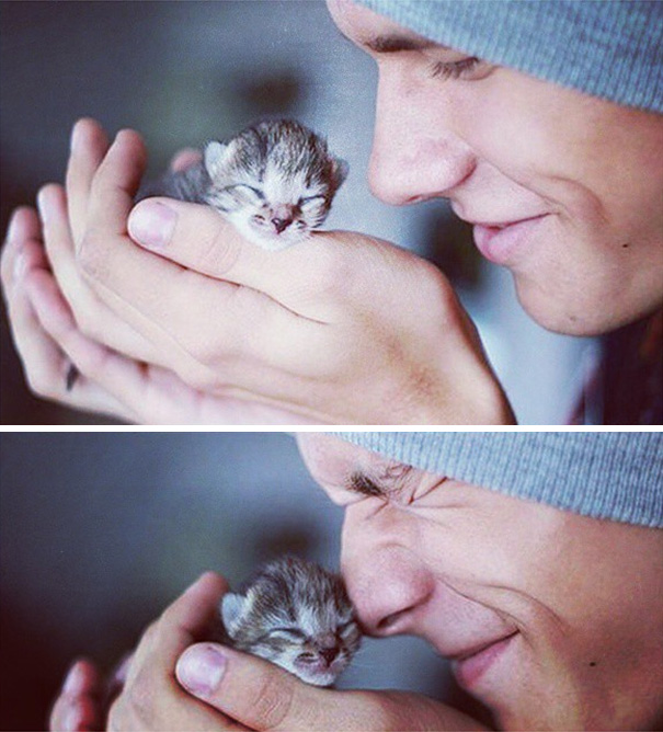 instagram-tios-buenos-gatos-5