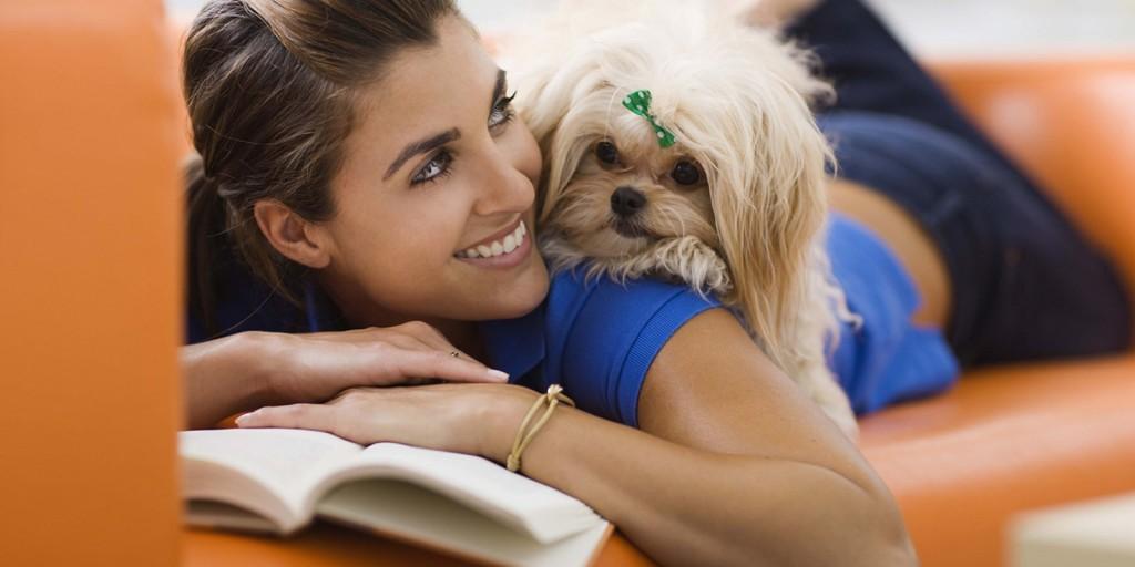 -_Hay_un_perro_para_cada_amo_o_un_amo_para_cada_perro_2