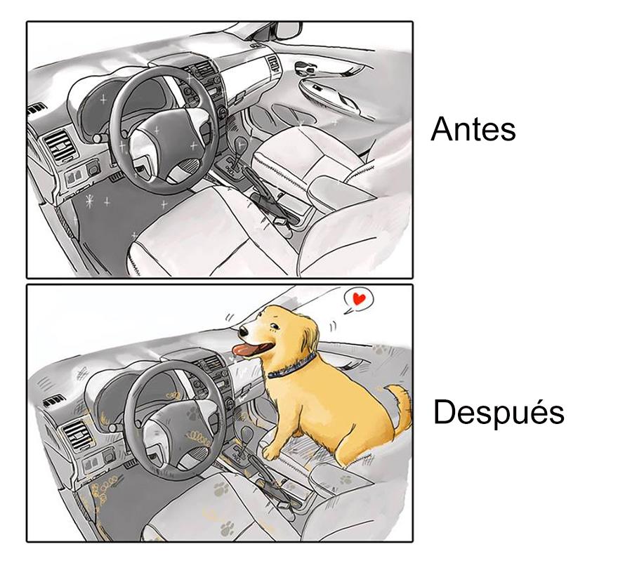 Tener-Un-Perro-7