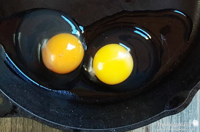 codigo-huevos-04