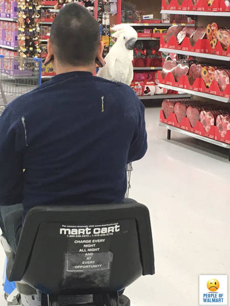kooky_people_you_can_see_at_walmart_640_15