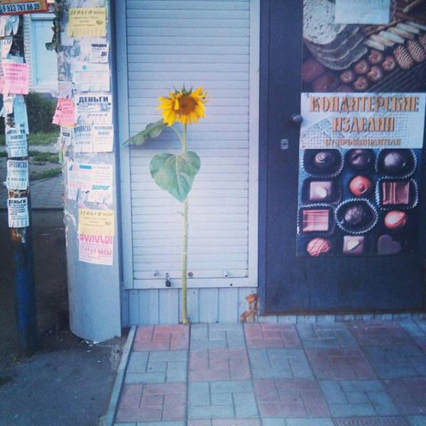morning_picdump_895_640_09