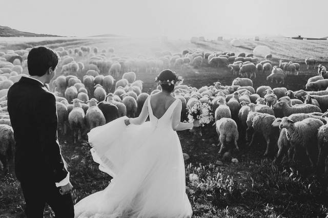 most_beautiful_wedding_pictures_of_2015_640_28
