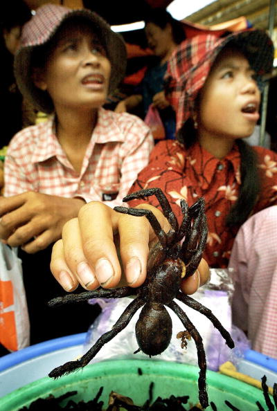 Two Cambodian women selling grilled spid