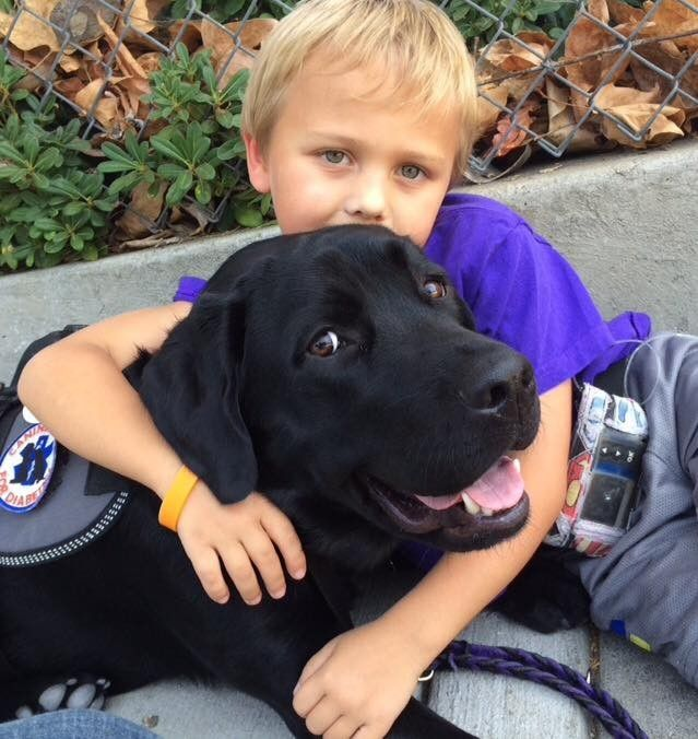 8349992_this-dog-saves-his-little-boy-every-single_t542a3268