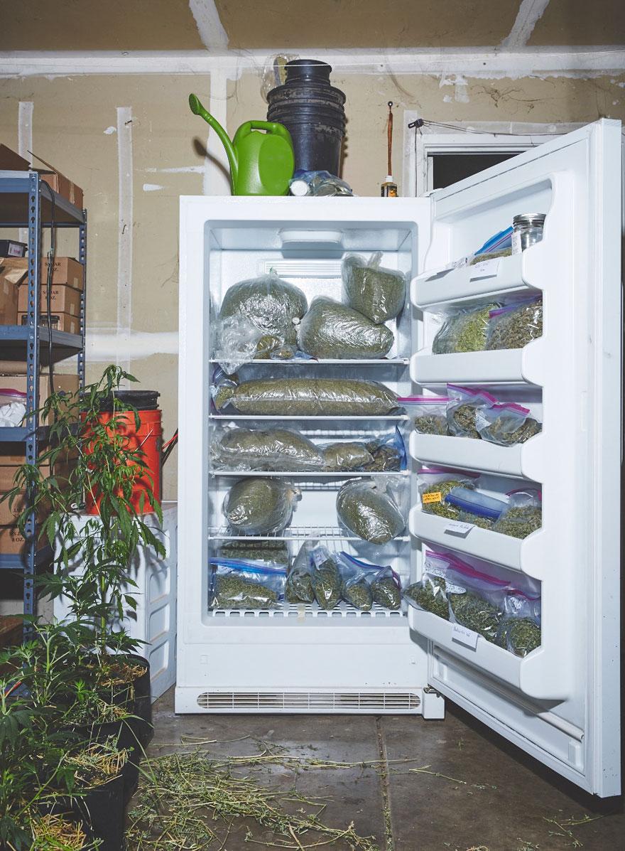 monjas-hermanas-valle-cultivo-marihuana-medicinal-2