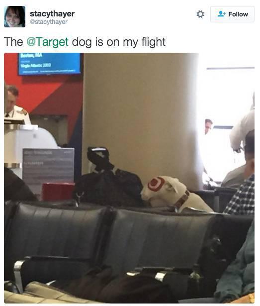 random_celebrities_taking_random_flights_640_high_01
