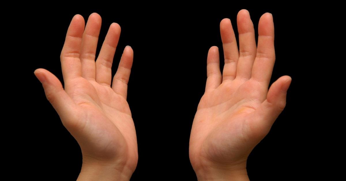 Resultado de imagen para manos