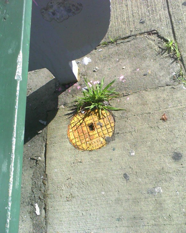 funny-vandalism-street-art-67-5704bdadc90bb__605