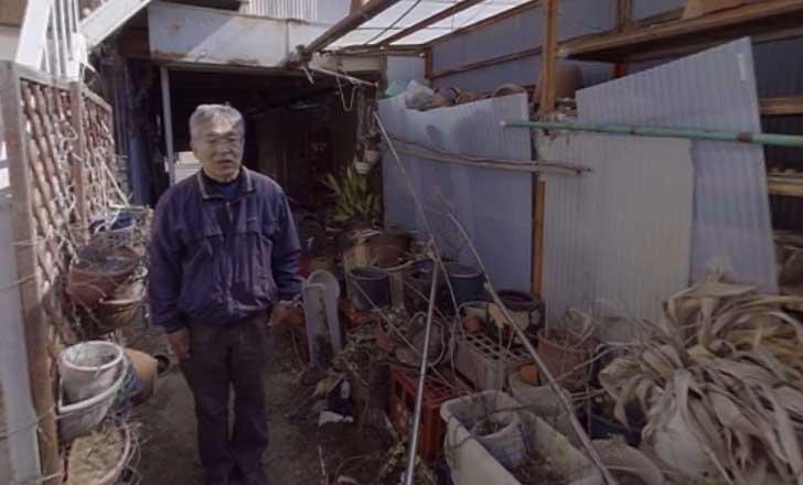 Fukushima 5 años después del terremoto y tsunami