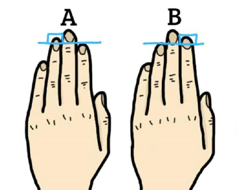 finger-length-1