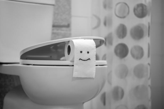 Papel de ba o al inodoro for Inodoros modernos 2016