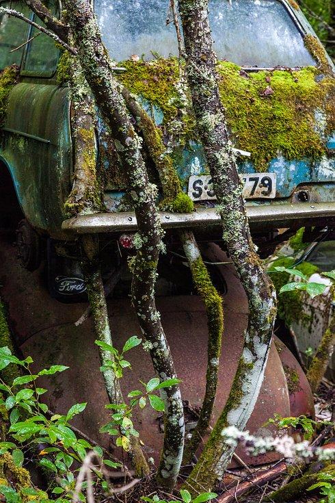 5762603a8a18a_coches_11