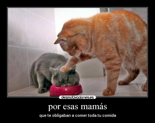 madres-enojadas-10