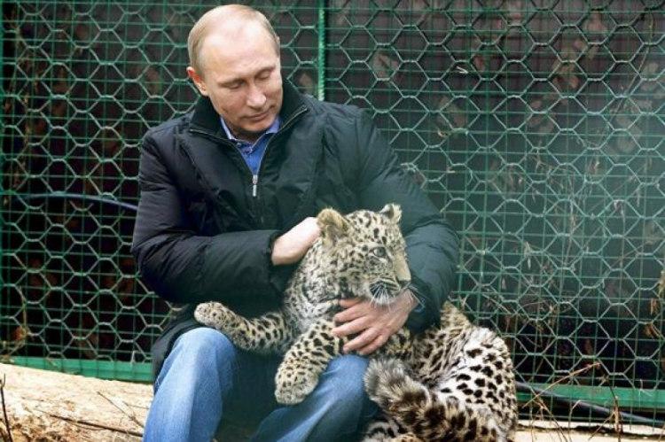Datos curiosos que probablemente NO sabías  Vladimir Putin