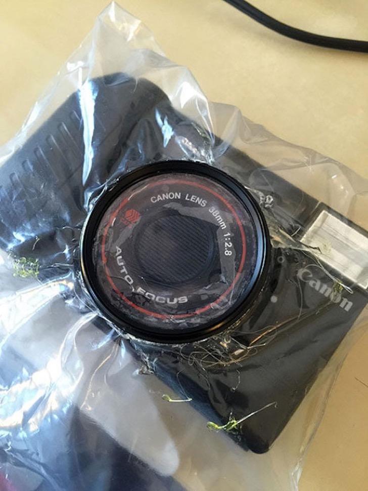 one-dollar-camera-challenge-skyler-adams-9