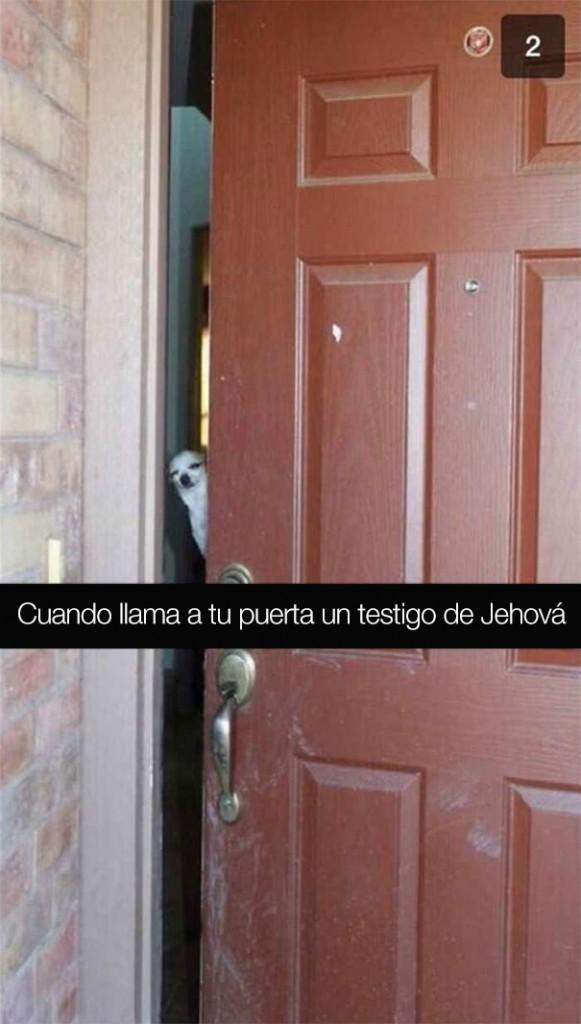 divertidos-snapchats-11