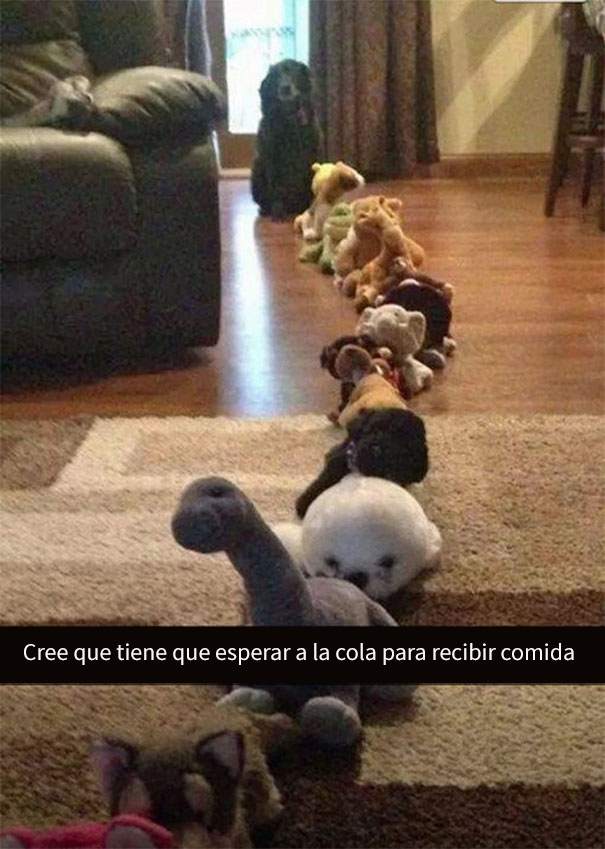 divertidos-snapchats-2-10