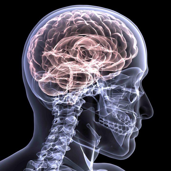 25-verdades-que-harán-estallar-tu-cerebro-2-700x700