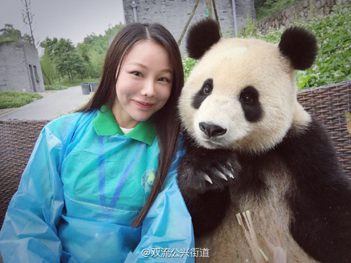 giant-panda-poses-tourist-selfie-1