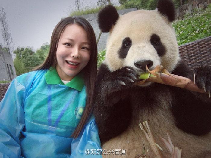 giant-panda-poses-tourist-selfie-5