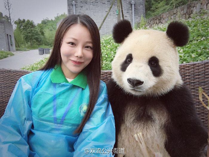 giant-panda-poses-tourist-selfie-6