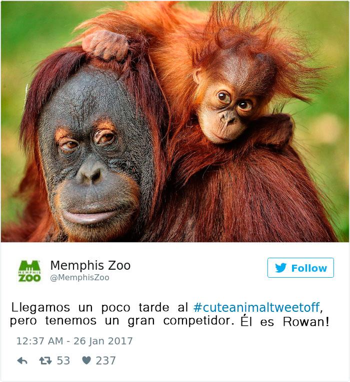 zoo20