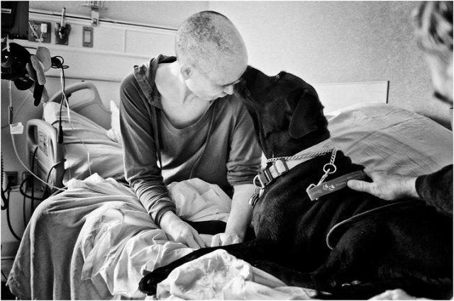 fotografo-retrata-a-su-esposa-con-cancer-hasta-que-muere-13
