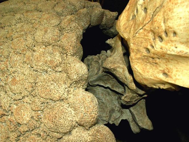 un-descubrimiento-de-mas-de-10-000-anos-de-antiguedad-tiene-locos-a-los-cientificos-en-argentina-1477483460