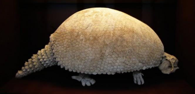 un-descubrimiento-de-mas-de-10-000-anos-de-antiguedad-tiene-locos-a-los-cientificos-en-argentina-1477484071