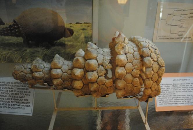 un-descubrimiento-de-mas-de-10-000-anos-de-antiguedad-tiene-locos-a-los-cientificos-en-argentina-1477487928