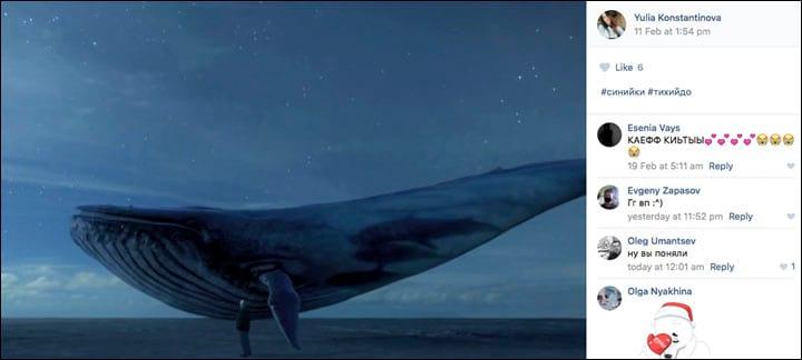 unilad.co_.uk-362-blue-whale-1