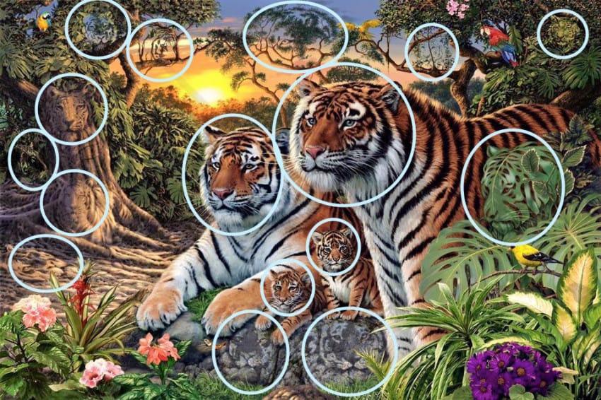 Pocas-personas-son-capaces-de-encontrar-a-todos-los-Tigres-de-Esta-Imagen-03