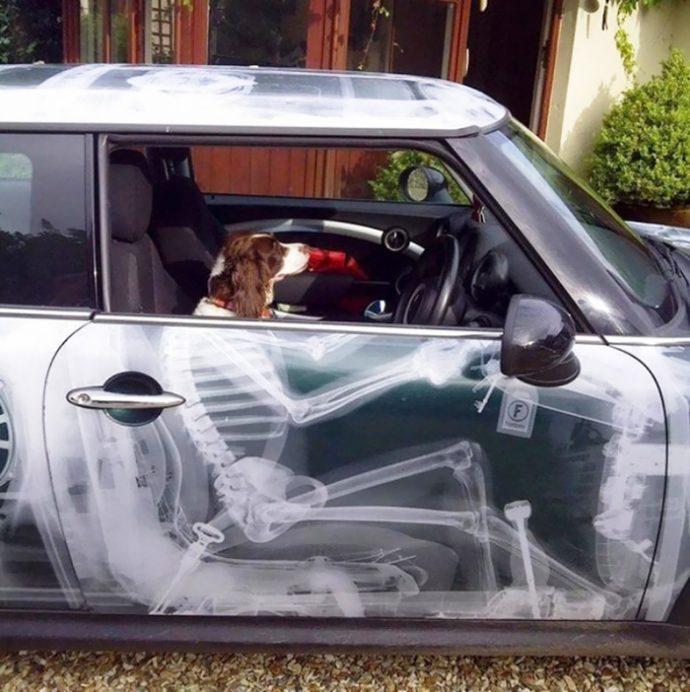 los-20-duenos-de-coches-mas-creativos-que-hayas-visto-nunca-1478257208