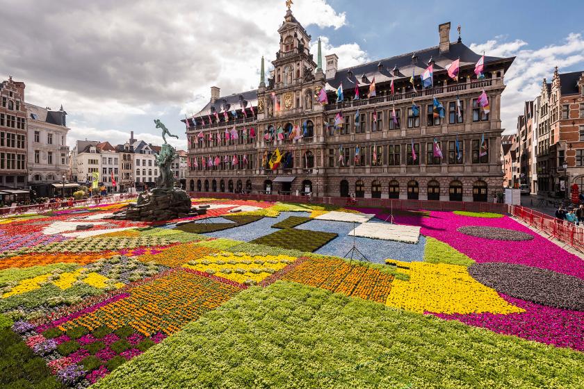 APTOPIX Belgium Flower Carpet