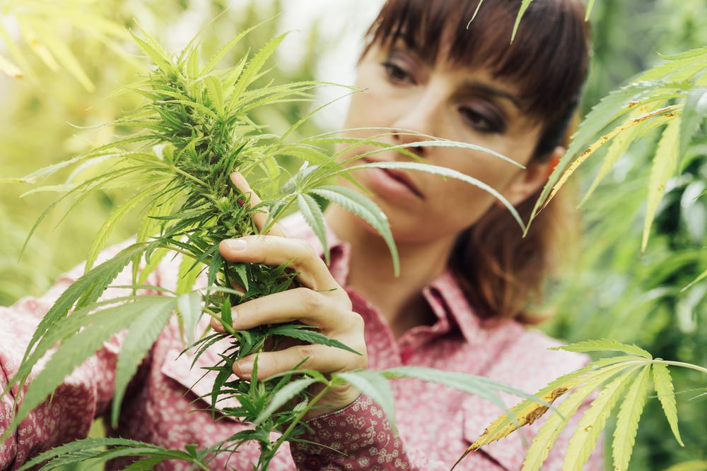 que-le-ocurre-a-tu-cuerpo-cuando-fumas-marihuana-durante-20-anos-02