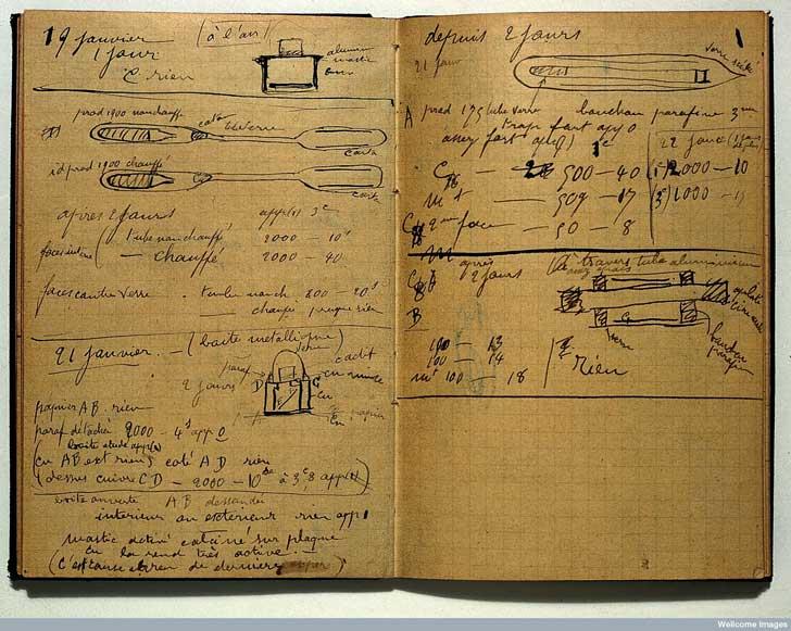 curie-notebook