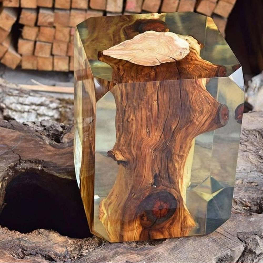 Tree Trunk Coffee Table South Africa: 24 Imágenes CURIOSAS Que NO Se Ven Todos Los Días